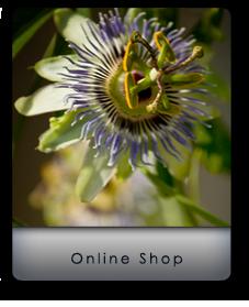 Visit my Online Shop.